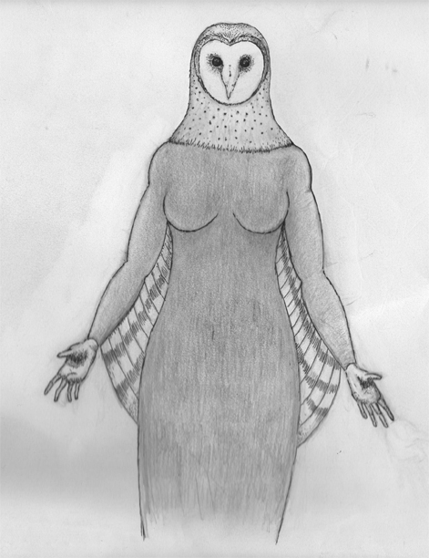 Witch Owl sketch